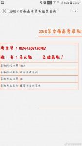 2018安徽李家军录取喜报82号